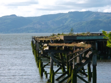 old dock structure next to the Cannery Pier Hotel which is near the West Mooring Basin where we stay. This picture was taken in May.