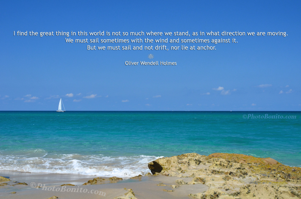 05 - oliver wendell holmes quote